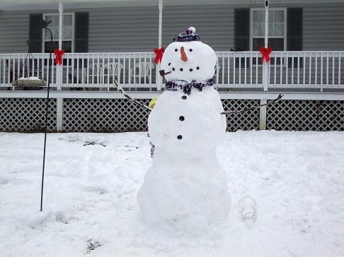 snowman house